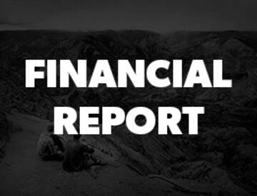 Dometic Financial Report