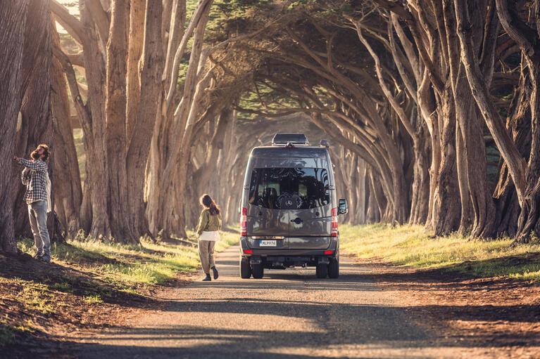 Dometic, pojazd rekreacyjny, kamper, samochód kempingowy, wakacje, aleja, drzewa, światło, słońce, droga, jazda, rodzina, natura