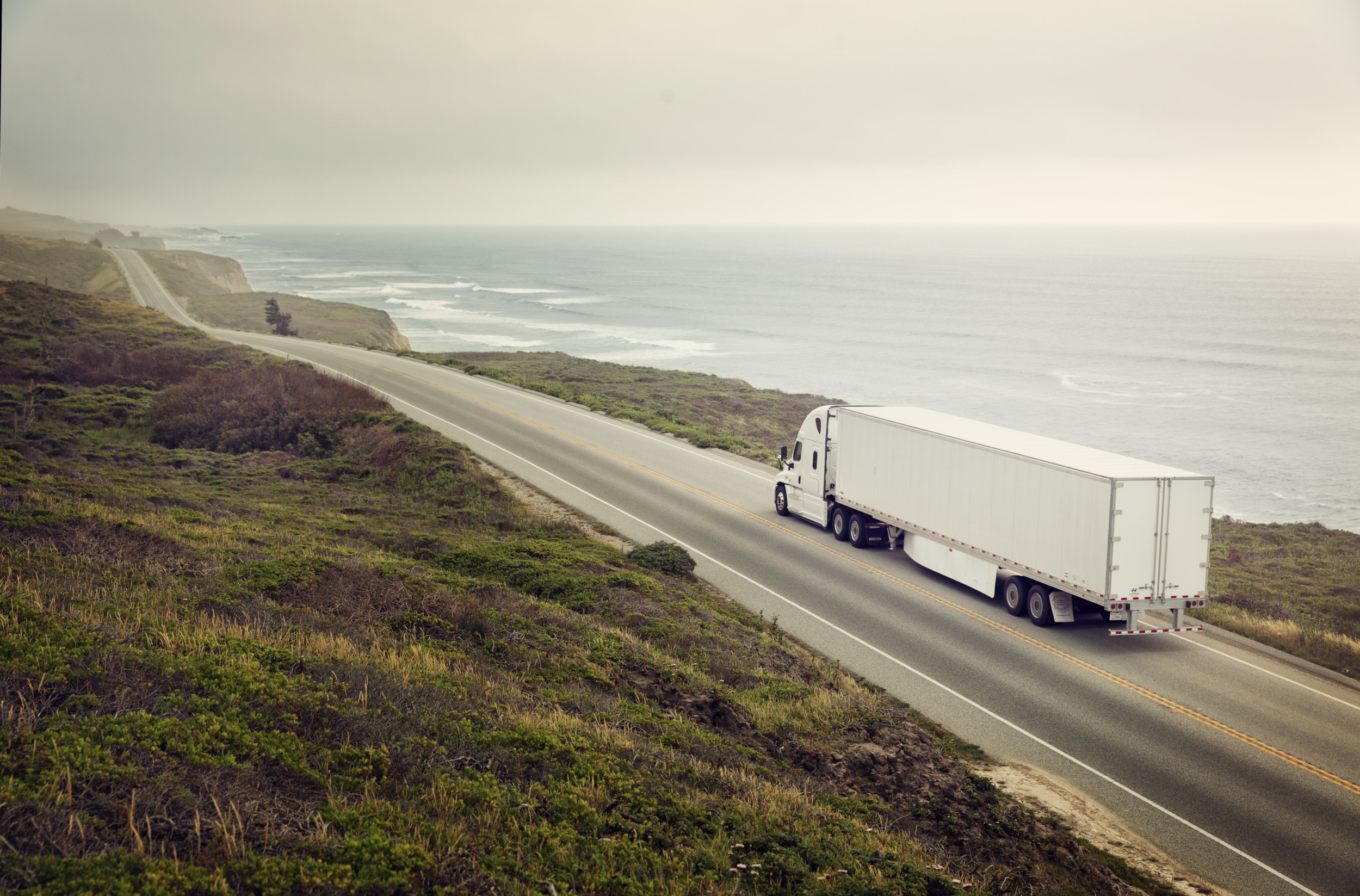 truck, sea, seaside, beach, truck, road, moss