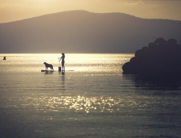 Dometic, See, Hund, Paddleboard, Sonnenuntergang, Ozean, Berg, Lifestyle