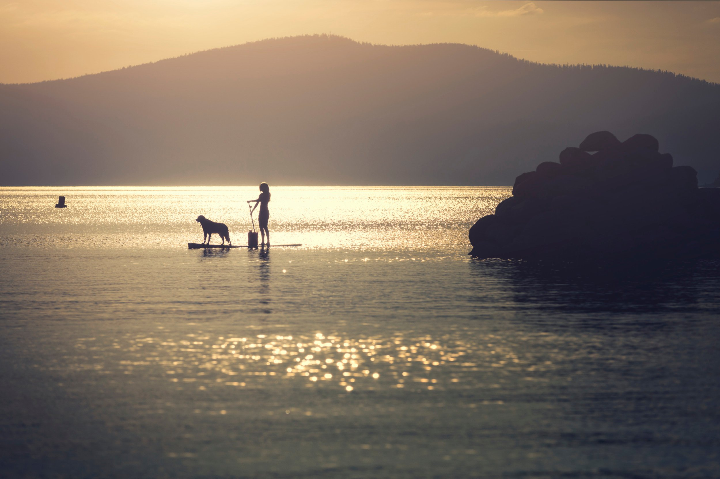 Dometic, lake, dog, paddleboard, sunset, ocean, mountain, lifestyle