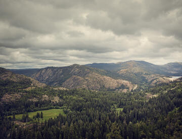 Dometic, view, forest, mountains, sky, grey, clouds, nature, wildlife, trees